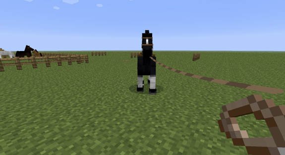 How to Feed a Horse in Minecraft